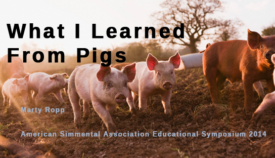 What I Learned From Pigs:  Marty Ropp
